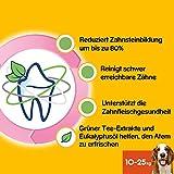 Pedigree DentaStix Fresh Hundesnack für mittelgroße Hunde (10-25kg), Zahnpflege-Snack mit Eukalyptusöl und Grüner Tee-Extrakt, 10 Packungen je 7 Stück (10 x 180 g) - 4