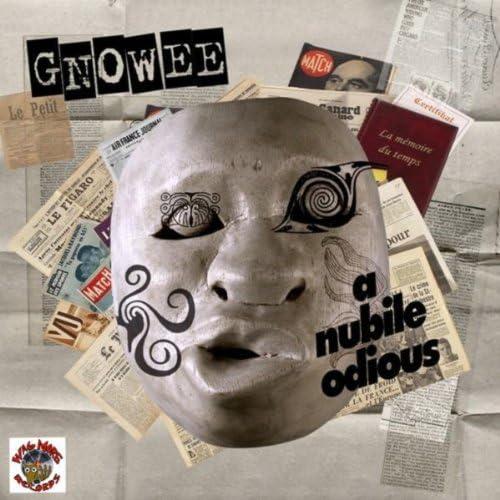 Gnowee