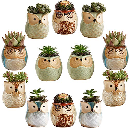 Sun-E 2.5 Inch Owl Pot Ceramic Flowing Glaze Base Serial Set Succulent Plant Pot Cactus Plant Pot Flower Pot Container Planter Bonsai Pots with A Hole Idea 12 in Set