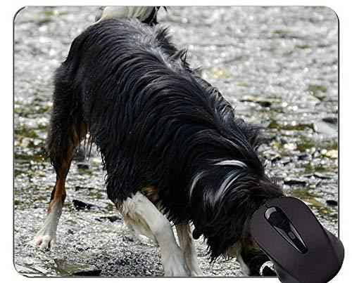 Yanteng Lindo Cachorro de Perro acostado en el Suelo Alfombrilla de ratón, Border Collie Alfombrilla de ratón cómoda para Juegos y Oficina