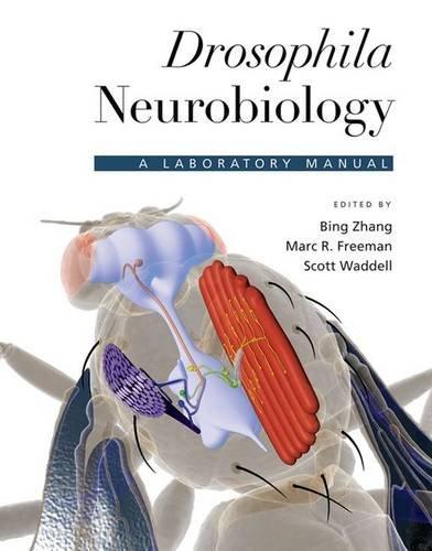Drosophila Neurobiology: A Laboratory Manual