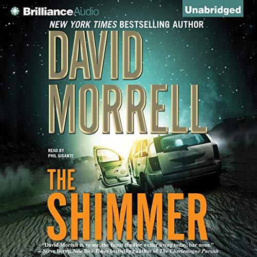 The Shimmer cover art