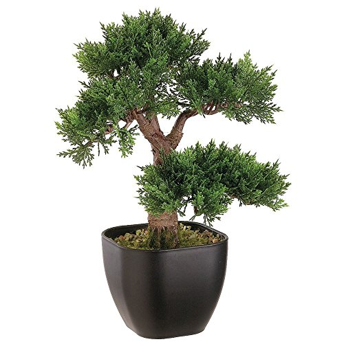 15' Artificial Cedar Bonsai Tree in Black Container