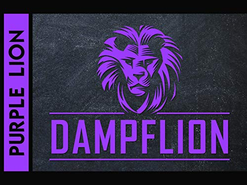 Dampflion Aroma 20ml / Purple Lion