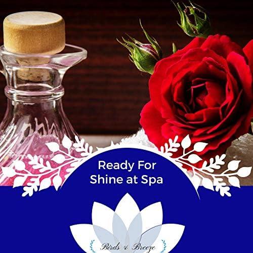 Yogsutra Relaxation Co, Maha Rudransh, Serenity Calls, Rory Wayne, Powerful Insights, Ambient 11, Trinity Meditationn Club, Liquid Ambiance, Anupama Reddy, Tannmoy Bose, Power Diggers, Placid Winds, Royal India & Spiritual Halo