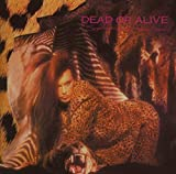 Songtexte von Dead or Alive - Sophisticated Boom Boom