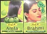 Hesh–Polvo ayurvédico AMLA BIO (1 paquete) - Cuidado de la piel y polvo ayurvédico BRAHMI (1 paquete) - Tónico y antienvejecimiento, aclara la tez y previene el envejecimiento - Estimula el crecimiento del cabello