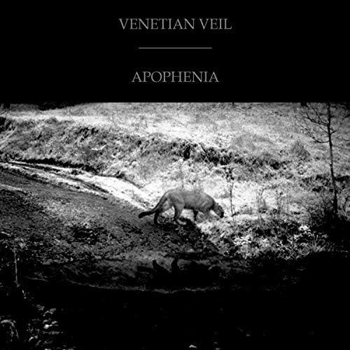 Venetian Veil