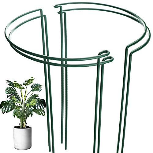HiGift 4 Stück Pflanzenstütze mit Metallringen für Pflanzen, halbrunde Pflanzenstützen für hohe Topfpflanzen im Innen- und Außenbereich für Pfingstrose, Tomaten, Hortensien (25,4 cm breit x 40,1 cm hoch)