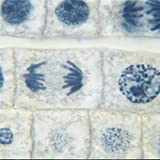 Onion Mitosis Slide, l.s, 10 m, Hematoxylin