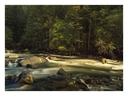 Obras de Arte Italia Río Merced que fluye por el suelo del valle, Parque Nacional de Yosemite, California-Arte de papel 26'x20'