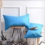 YUHUALI Taie d'oreiller Coton taie d'oreiller étudiant taie d'oreiller lac Bleu 09 48 * 74cm Une pièce