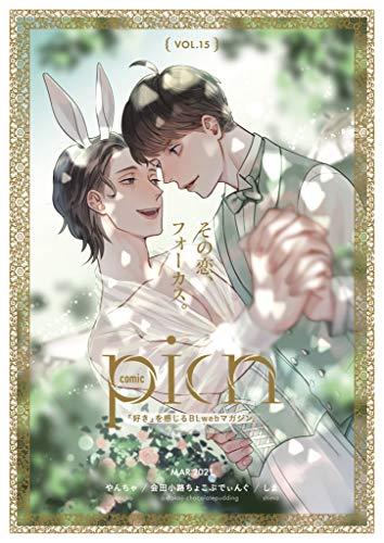 comic picn vol.15 (picn comics)