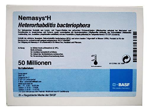 Nemasys® H BASF HB Nematoden 50 Mio. (100m²) gegen Engerlinge und Käferlarven (Dickmaulrüssler, Maikäfer u.a.) - Profipackung