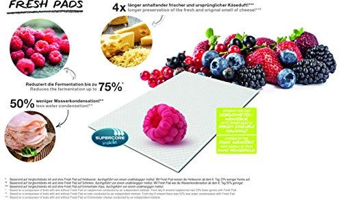 Rotho 1020390000 10er Fresh Pads zum Einlegen in jede Art von Vorratsdosen, hergestellt aus 99% erneubaren Rohstoffen (ohne Klebemittel, Bindemittel)