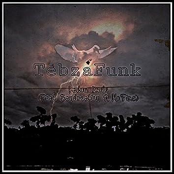 Ladum Izulu (feat. Sandzsation & Mo'Fire) [Radio Edit]