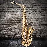 Saxo tenor práctico para ejercicios de entrenamiento para principiantes