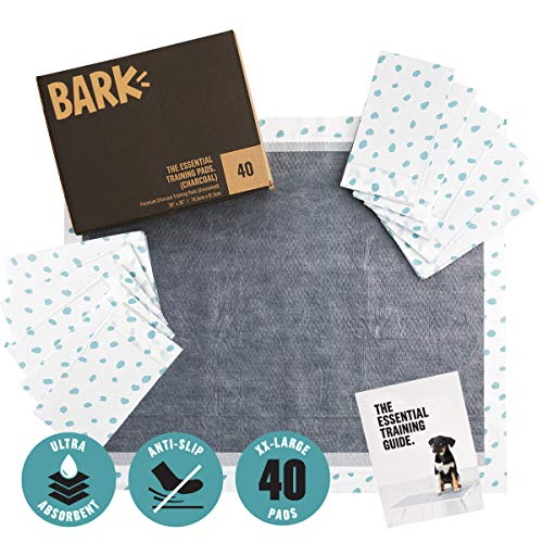 BarkBox Bulk Ultra-Absorbent Pet and Puppy Training Pee Pads