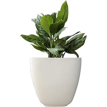 Yuccabe Italia ASA Small Planter