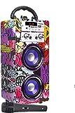 DYNASONIC (3.ª generación) - Altavoz Karaoke Infantil para niños y niñas | Radio FM y Lector USB SD (Modelo 12)
