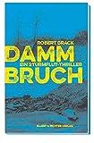 Image of Dammbruch: Ein Sturmflut-Thriller