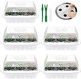 Mini serra da giardino, vassoio per sementi con coperchio/etichette/utensili per la semina con 12 celle, per germinazione, crescita di semi (5 pezzi, stile C)