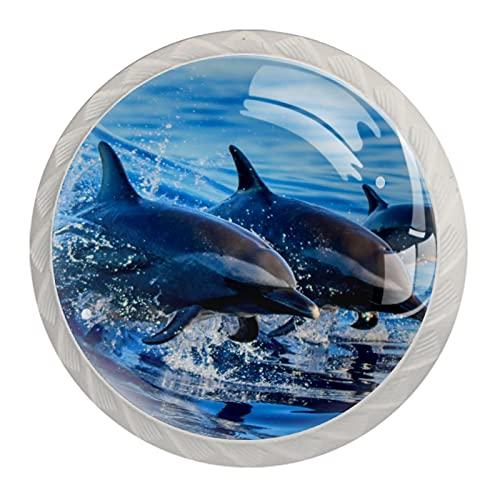 Pomos Para Armario Playa Dolphin Blue 4x estilo magnífico gabinete de Redondo perillas tire manijas para muebles armario cajón armario cocina baño 35mm (Blanco)