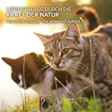 AniForte Ohrmilbenöl 50 ml bei Ohrmilben- Naturprodukt für Hunde, Katzen und andere Haustiere - 6