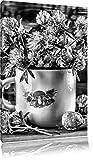 Pixxprint Monocrome, Kleeblüten in Blechtopf, Format: 80x60 auf Leinwand, riesige Bilder fertig gerahmt mit Keilrahmen, Kunstdruck auf Wandbild mit Rahmen