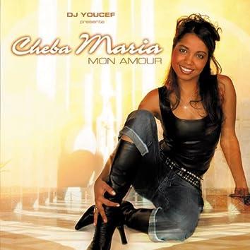 Mon amour (feat. DJ Youcef présente)