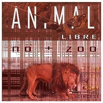 Animal Libre No + Zoo