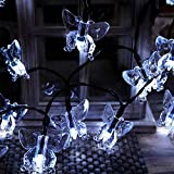 TEPET Creativity Solar String Lights, 8 Modos Rose Flower Forma de Mariposa Cortina Cadena de Luces Luces centelleantes Impermeables al Aire Libre para Ch