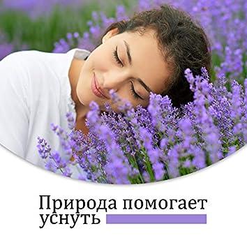 Природа помогает уснуть: Натуральное средство на сон, Звуки сна для детей и взрослых, Звуки природы, Шум воды, Птицы, Успокаивающая атмосфера, Эффективное лечение бессонницы и тревожности