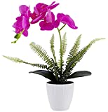 Olrla Blanca phalaenopsis Artificial orquídea Bonsai con cerámica Partido Boda del florero jardín...