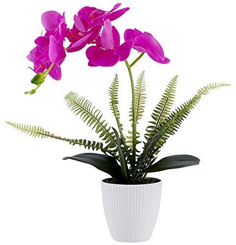 Olrla Blanca phalaenopsis Artificial orquídea Bonsai con cerámica Partido Boda del florero jardín decoración del hogar (Rojo 1)