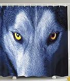 Nyngei Fauna Silvestre Lobo Salvaje Ojos Piel Vida Silvestre Animal Vista Nocturna Imagende Alta resolución Primer Plano Impresióndigital deAzul Amarillo