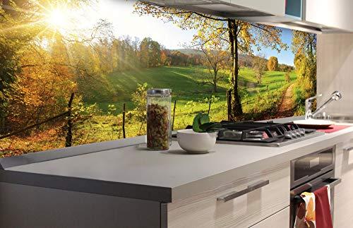 DIMEX LINE Küchenrückwand Folie selbstklebend Wiese | Klebefolie - Dekofolie - Spritzschutz für Küche | Premium QUALITÄT - Made in EU | 180 cm x 60 cm