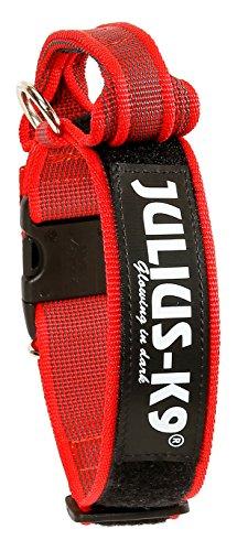 Julius-K9 Collar Color & Gray con la manija, la cerradura de seguridad y el remiendo intercambiables, 40 mm 38/53 cm, Rojo/Gris