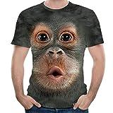 Routinfly Männer Frühling Sommer 3D Print Oansatz Kurzarm, T Shirt Tops Bluse 3D Gedruckt Tier AFFE T-Shirt Kurzarm Lustige Design Casual Tops Tees Männlichen