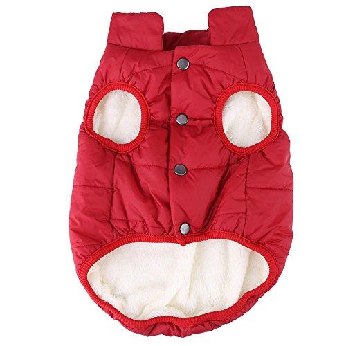 Haustier Kalt Warmhalterung Mantel Winterjacke Winddichte Hundeweste Jacke Baumwolle Jacke für Hunde/Katzen im Herbst und Winter(M b)