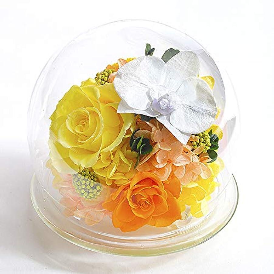 【水色ギフトBOX】胡蝶蘭のガラスドーム〈L〉 (リニューアル)【イエロー】/プリザーブドフラワー/母の日/父の日
