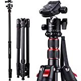 Tripods For Digital Cameras Review and Comparison