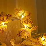 Redxiao - Simulación de hojas de arce con forma de 10 LED, luces de cuerda de plástico, luces duraderas, ahorro energético para chimenea, marco para puerta de jardín, para interiores y exteriores