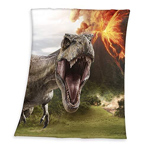 Herding Jurassic World Soft-Peach-Decke, Größe 130 x 160 cm, Polyester