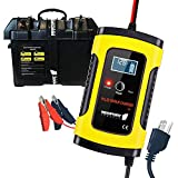 Newport Vessels 12V Smart Battery Kit with Smart Battery Box and 12V Smart Pulse Repair Charger