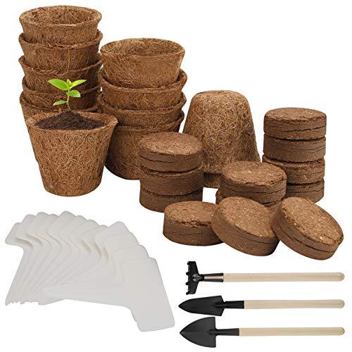 Herefun 39 Stück Anzucht Set, Anzucht-Töpfe, Pflanzenanzucht, Bonsai Starter Kit mit Aufzucht-Erde, Pflanzentöpfe Abbaubar, Etiketten, Bonsai Anzuchtset für Pflanzenfreunde, Kinder Geschenk