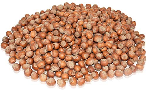 Anna and Sarah Large Oregon Hazelnuts in Shell, 5 Lbs