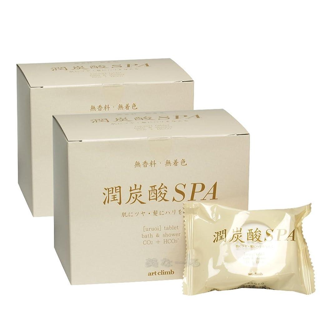 任命ロマンス血色の良い潤炭酸SPA BS (炭酸泉タブレット)60g×10錠入 2個セット