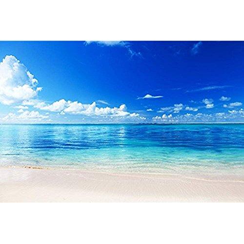 Hilda33Louis Sea Beach Horizon Sand Tropics Nature Poster Canvas Art Print
