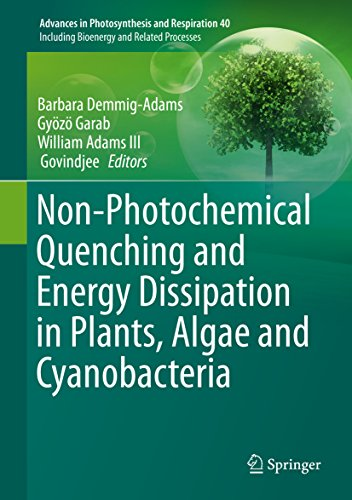Non-Photochemical Quenching and Energy Dissipation in Plants, Algae and Cyanobacteria (Advances in Photosynthesis and Respiration Book 40)